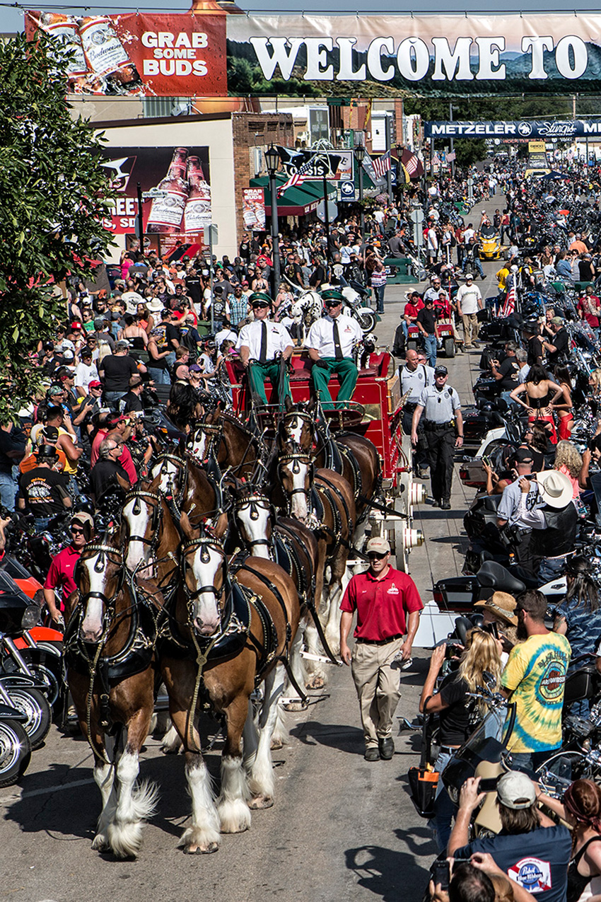 img-clydesdales-on-main-street.jpg